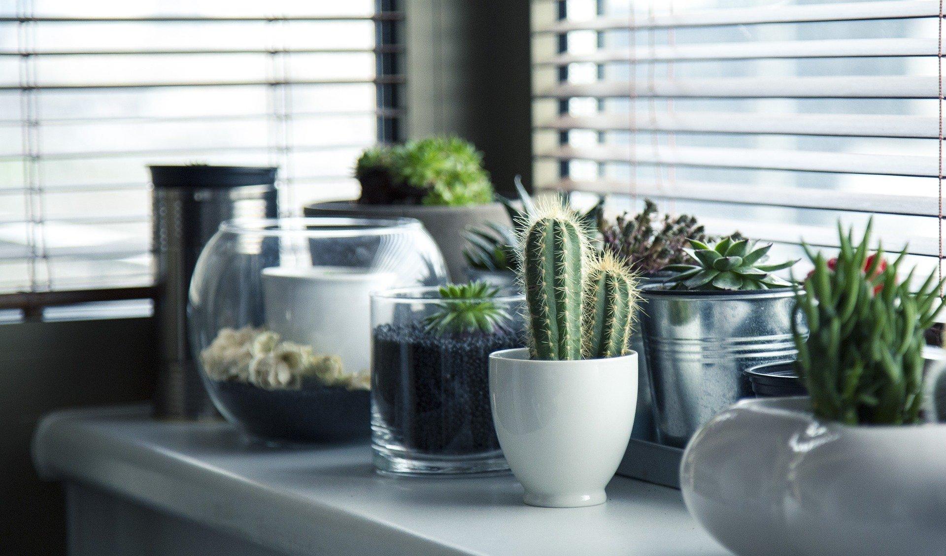 Pourquoi faire appel à un décorateur d'intérieur pour votre maison ?